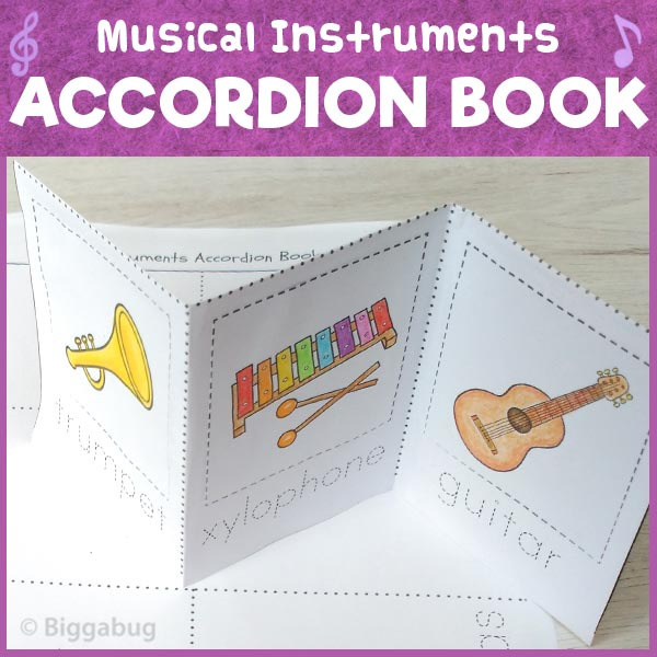 musical instruments accordion book