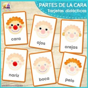 Partes de la cara - Tarjetas Didacticas - Tea Time Monkeys