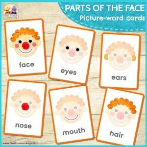 Parts of the Face Flashcards - Tea Time Monkeys