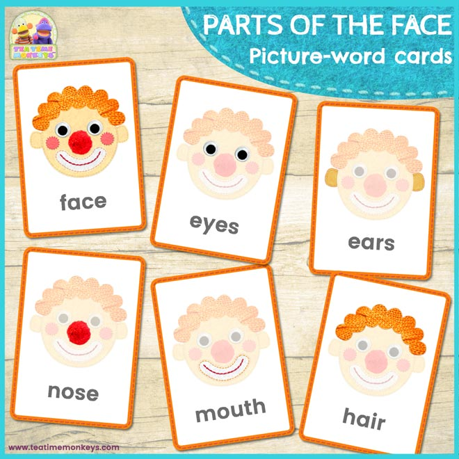 PARTS OF THE FACE Picture-Word Flashcards