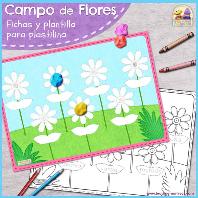 campo-de-flores-post-featured