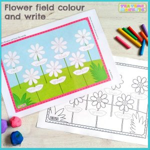 Flower field colour and write