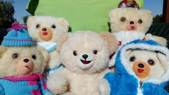 Teddy Bears' Picnic Activity Ideas - Tea Time Monkeys