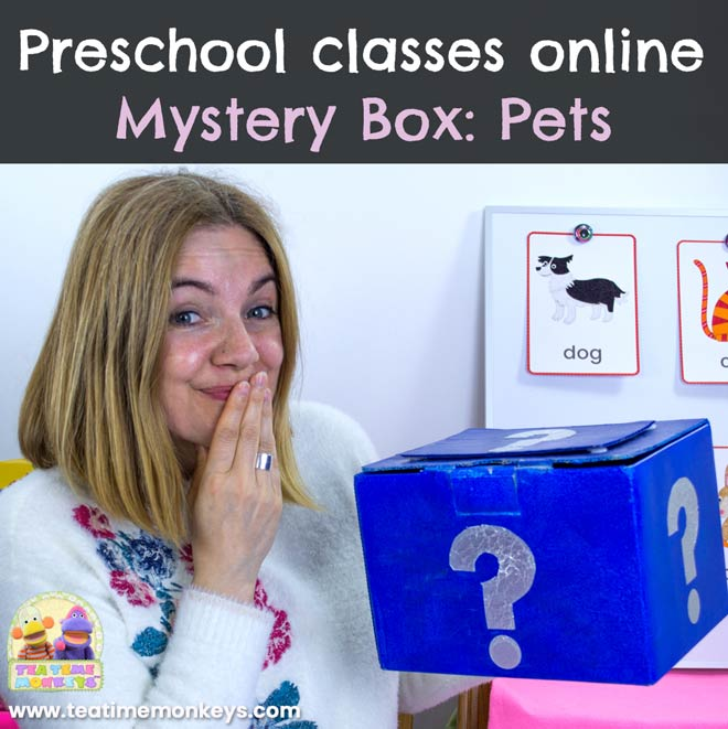 Preschool classes online. Mystery Box: Pets